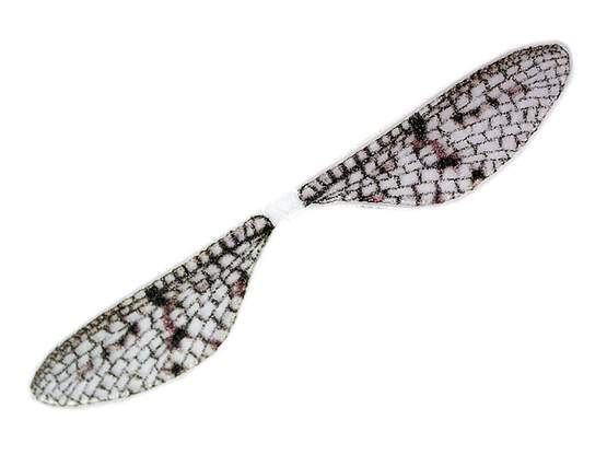 X-TRUE MAYFLY WINGS hotfly - 10 pc.