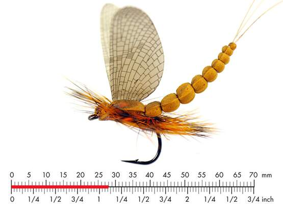 Mayfly Dun M1 Cinnamon Brown 28mm