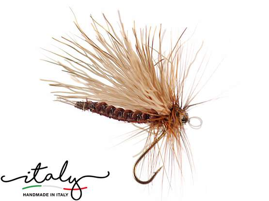 Sedge - 16 mm